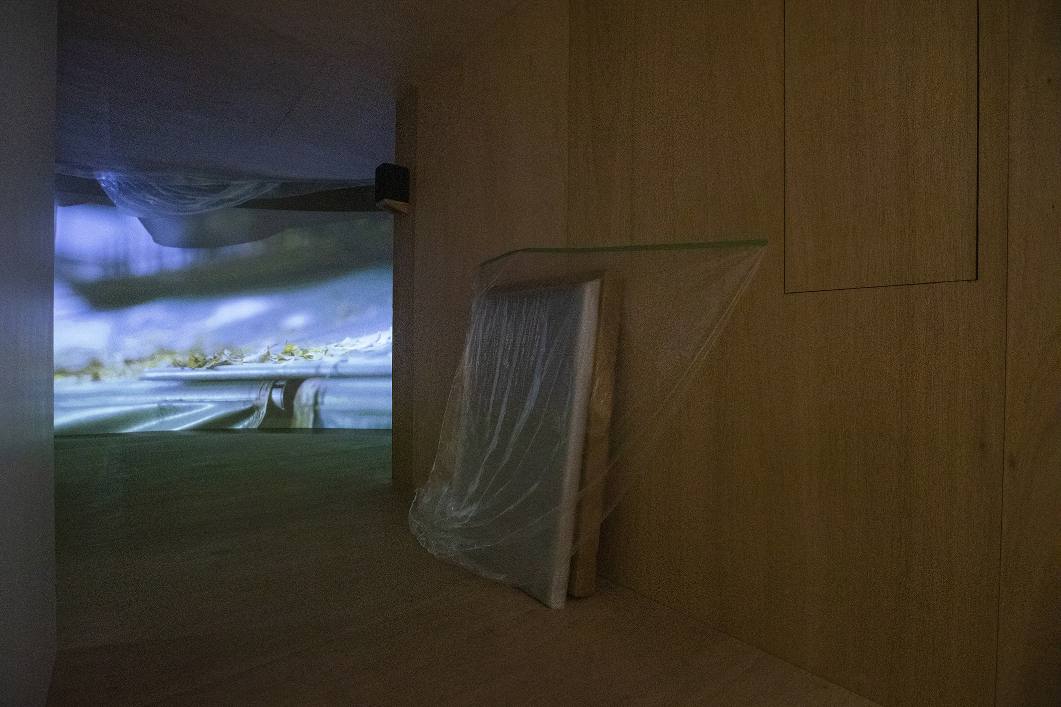 A Journey without Body, Site specific (printmaking, carton, plastic), Dimensions variable, 2021